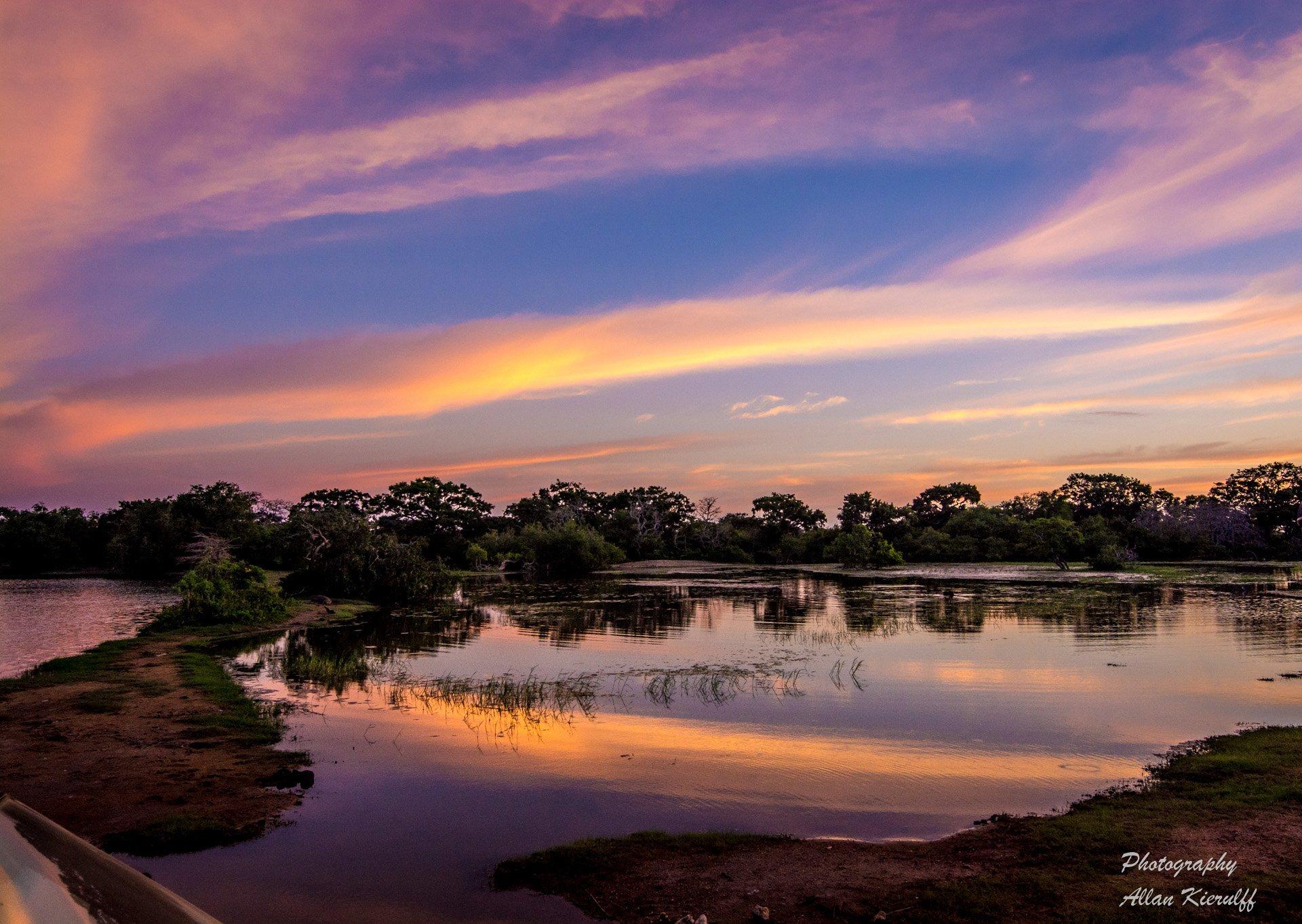 På tur til den fantastiske og eksotiske jungle-Ø Sri Lanka.